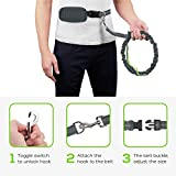"Pecute Hands Free Dog Leash Double Handle Running Leash with Zipper Pouch - Shock Absorbing Extendable Bungee with Reflective Stitching - Detachable Waist Belt Adjustable Fits up to 48"" Waist - For Jogging, Running, Walking, Hiking (Grey + Green)"