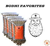 Bodhi Favorites Sampler Pack - Top 5 Green Coffees Recommended By our Roastery - Green Unroasted Coffee Beans - 100% Arabica Raw Coffee - Specialty Grade (5 LB - 1 lb of Each)