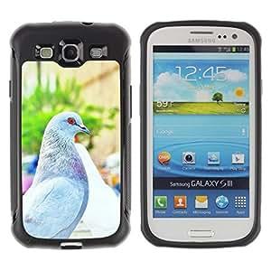 """Pulsar iFace Series Tpu silicona Carcasa Funda Case para Samsung Galaxy S3 III I9300 , Paloma Paloma Italia Florencia Summer Sun"""""""