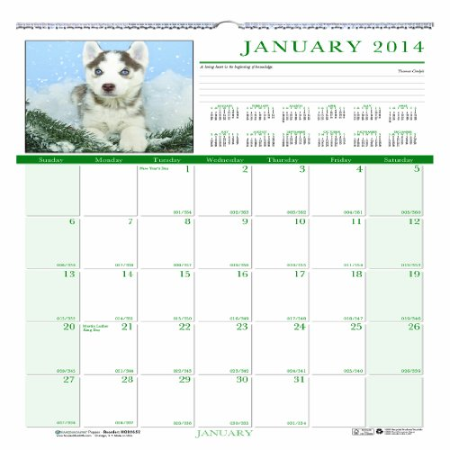 Earthscapes Puppies Wall Calendar (House of Doolittle Earthscapes Puppy Wall Calendar 12 Months, January 2014 to December 2014, 12 x 12 Inches, Full Color Photo, Recycled (HOD3651))