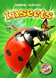 Insects, Kari Schuetz, 1600147747