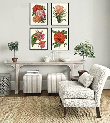 Botanical Tropical Flowers Art Print Set of 4 Beautiful Antique Pink Red Orange Cactus Azalea Ariza Rhododendron Large Garden Nature Home Room Decor Wall Art Unframed