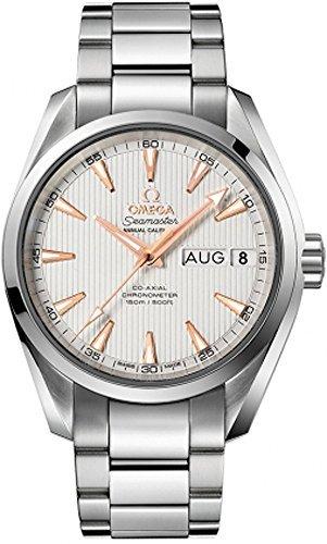 Omega Seamaster Aqua Terra 231.10.39.22.02.001