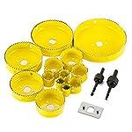 Sega-Witasm-da-16-pezzi–Il-set-include-seghe-a-tazza-circolari-per-legno-e-metallo-da-19-a-127-mm-punte-da-trapano-adattatore-e-valigetta