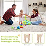 BABY JOY Sit-to-Stand Walker, 2 in 1 Pull and