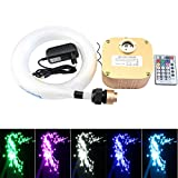 16W Twinkle Fiber Optic Light Star Ceiling Kit, LED RGBW Engine Driver with RF 28 Key Remote control 0.03in/0.75mm 9.8ft/3m 450pcs + Crystal