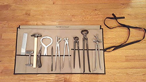 11 Piece Farrier's Tool Kit Set Horse Hoof Nippers Clincher Tester Knife Rasp Chisel Shears Floats Equine Dental + Fold Up Case Clincher Set