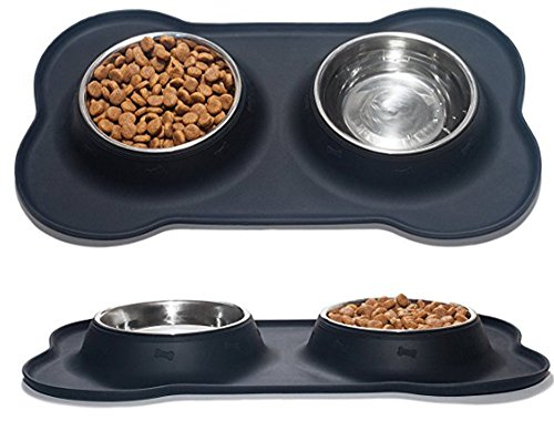 Nighthawk Small Dog | Cat Bowls with Mat Set of 2 Stainless Steel Bowls with Non-Skid & No Spill Silicone Dish Holder | Puppies Kitten Dish Washer Safe, Food Grade Silicone
