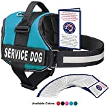 Image of Service Dog Vest With Hook and Loop Straps and Handle - Harness is Available in 8 Sizes From XXXS to XXL - Service Dog Harness Features Reflective Patch and Comfortable Mesh Design (Blue, Large)