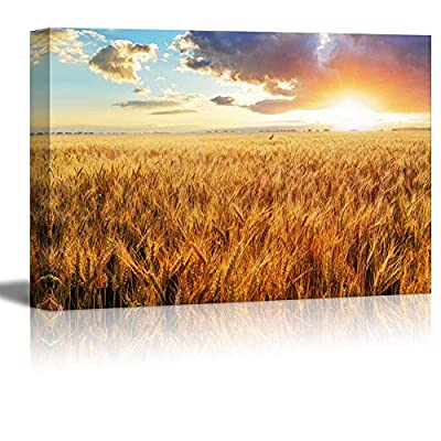 Handsome Print, Classic Design, Beautiful Scenery Landscape Sunset Over Wheat Field Home Deoration Wall Decor