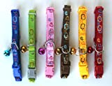Cat Collar Bell Plastic Buckle Clasp Nylon Rings Neck 7'' - 11'' (SET - 6 Colors)