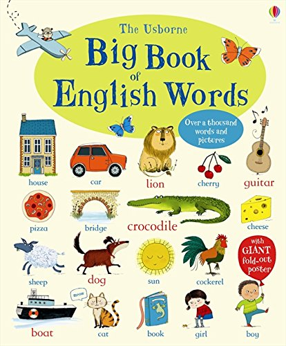 Big book of english words (Inglese) Cartonato – 13 gen 2015 Mairi Mackinnon Usborne Publishing 1409551652 LETTERATURA PER RAGAZZI