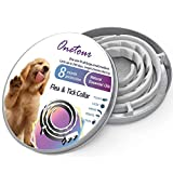 Flea and Tick Collar for Dogs - 8 Months Continuous Flea Prevention Collar for Dogs - One Size Fits All - Easily Adjustable and Waterproof Design