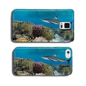 Colorful underwater coral reef with yellow stripped fish and big cell phone cover case iPhone6 Plus
