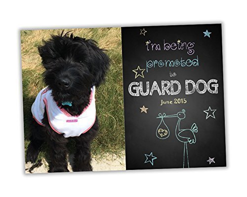 Guard Dog Baby Pregnancy Announcement Cards Reveal Handmade