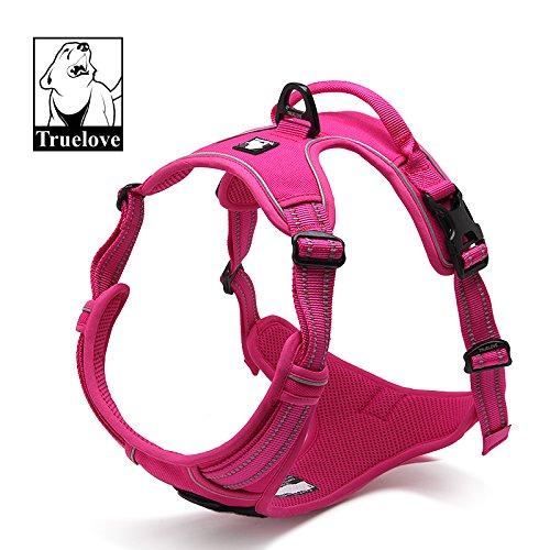 No-Pull Non-Choking Training Dog Harness. (MED, Fuchsia) (Harness Ezy)