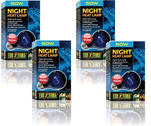 Exo Terra Night-Glo Moonlight A19 Lamp, 50-Watt (4 Pack) (Glo Bulb Reptile Night)