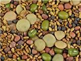 5 Part Salad Sprout Seed Mix -1/2 Lbs (8 Oz) - Organic Sprouting Seeds: Radish, Broccoli, Alfalfa, Green Lentil & Mung Bean - For Sprouts