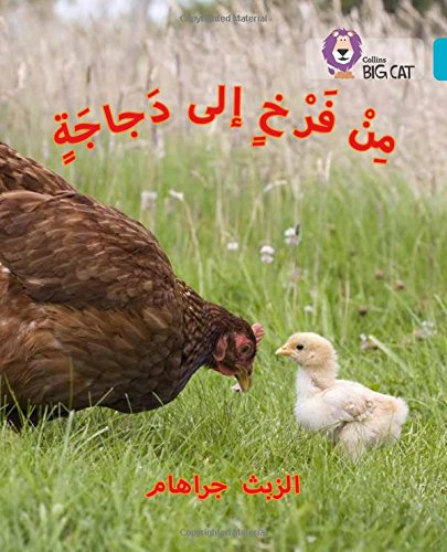 Chick to Hen: (Level 7) (Collins Big Cat Arabic)