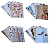 20 Assorted All Occassion Greeting Postcards Unique Beach Designs 4 x 6 inches Including Seashells, Starfish, Lighthouses, Sand Castles and More