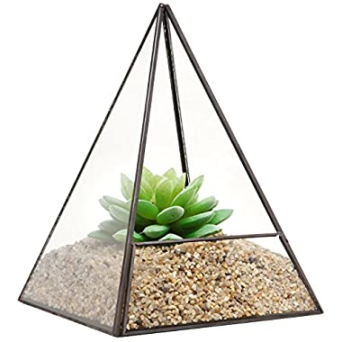 Modern Glass Pyramid Tabletop Succulent Plant Terrarium Box / Air Plant & Cacti Holder Case - MyGift®