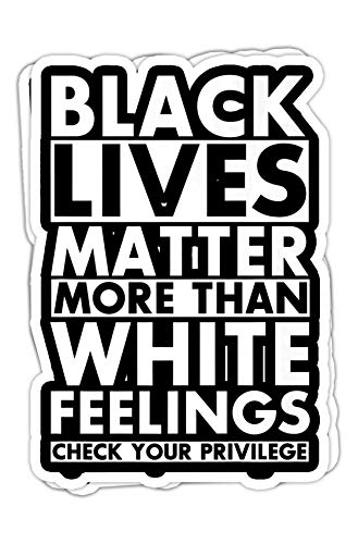 chillylkst Black Lives Matter More Than White Feelings Check Privilege Premium - 4x3 Vinyl Stickers, Laptop Decal, Water Bottle Sticker (Set of 3) (Black Lives Matter More Than White Feelings)
