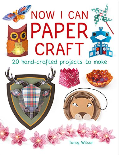 Now I Can Paper Craft: 20 Hand-Crafted Projects to Make ebook
