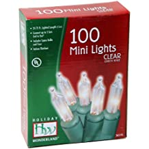 Noma/Inliten Holiday Wonderland 100-Count Clear Christmas Light Set,Green Wire