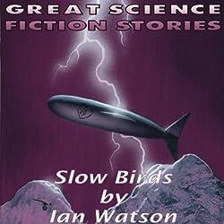 Slow Birds