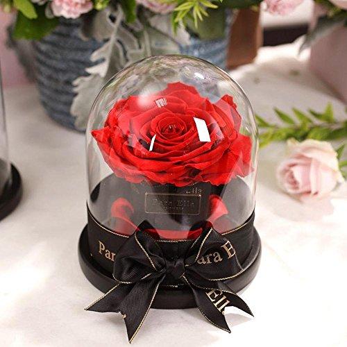 Wmshpeds Flor eterna caja de regalo Rosa Gigante preservada del regalo de cumpleaños Día de Navidad creativo regalo de San Valentín de la flor: Amazon.es: ...
