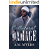 Collateral Damage (Hidden Scars Book 2)