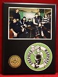 #5: Dropkick Murphys LTD Edition Picture Disc CD Rare Collectible Music Display