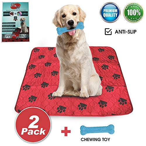 - Reusable Pee Pads for Dogs, Set of 2 Washable Extra Absorbent Anti-Slip Odor Control Leak-Proof Puppy Training Mats | Large 30 x 36 Peepee Soaker Blanket Liner Sheets