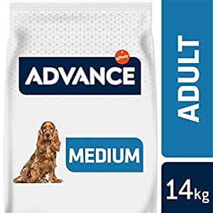 Advance Pienso para Perro Medium Adulto con Pollo – 14000 gr