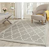 Safavieh Amherst Collection AMT414B Light Grey and Ivory Indoor/ Outdoor Area Rug (9' x 12')