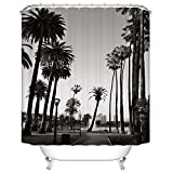 DUISE Shower Curtain Set, Los Angeles Downtown Park View with Palm Trees,Black and White, Polyester Fabric and Waterproof Shower Curtains, 60W X 72L Inches, Bathroom Accessories