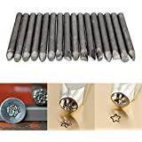 Plum Garden 16pcs leather Stamp Punches, DIY Leather Working Saddle Making Tools For Jewelry Flower