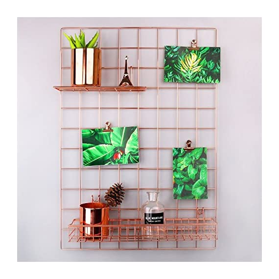 "SIMMER STONE Rose Gold Wall Grid Panel for Photo Hanging Display & Wall Decoration Organizer, Multi-Functional Wall Storage Display Grid, 5 Clips & 4 Nails Offered, Set of 1, 17.7""x 25.6"" - Nails & Clips Offered For Your Convenience - 5 chip bag clips & 4 non-trace nails are offered, giving you a comfortable way to set up. Adorable DIY Home & Office Wall Décor - Creating a different style for your room, taking some difference to your life, making a stunning life for yourself and your family. Perfect Display For Your Favorite - Great for cliping photo, postcard, artwork, kid's drawing or any thing you like. Decorate your wall at anywhere, anytime and any way you like. - picture-frames, bedroom-decor, bedroom - 51eP%2B84 4QL. SS570  -"