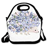Best Under Armour Lunch Boxes - Painting Hedgehog Reusable Insulated Lunch Bag School Picnic Review