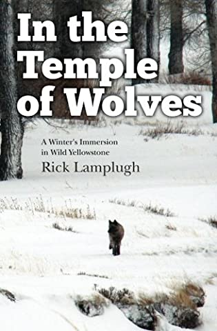 In the Temple of Wolves: A Winter's Immersion in Wild Yellowstone (Wild Wolf Publishing)