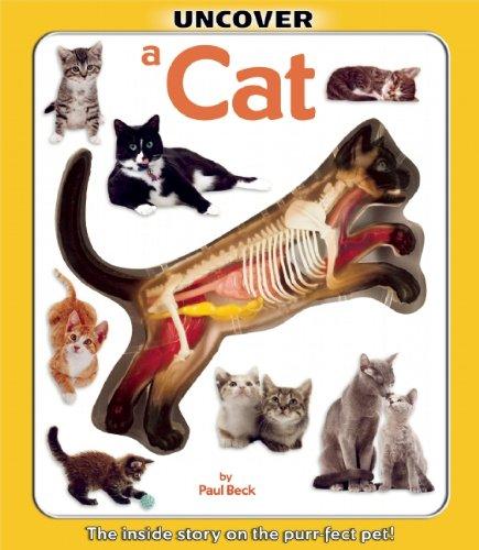 Uncover a Cat (Uncover Books)