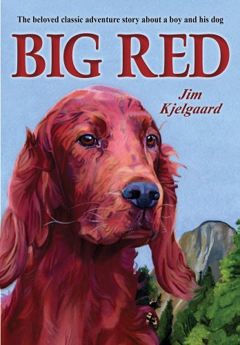 Big Red (Irish Setter Guy)