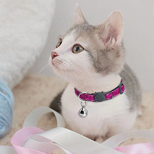 Beirui 5 Set Nylon Bling Dog Kitten Cat Adjustable Breakaway Collar Bells - Sparkling Quick Release Safe Buckle Cat Collar - Glitter Puppy ID Collar - X-Small Neck 7-10.5'' by Beirui (Image #2)