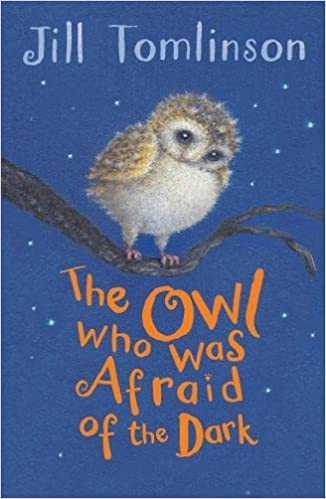 Image result for the owl who was afraid of the dark front cover
