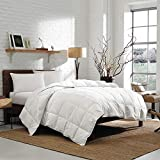 Eddie Bauer Striped Damask 700 Fill Power Oversized King Cotton Goose Down Comforter, White