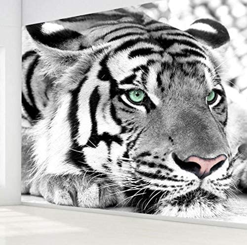 Shipping Black Tiger And White Wallpaper 3d Of The Wall Sofa Room Sizes Tv Background Amazon De Baumarkt