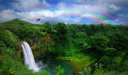Hawaii - Waterfall in Kauai with Rainbow - Photography A-91936 (9x12 Fine Art Print, Home Wall Decor Artwork Poster)