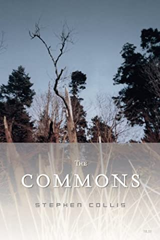 The Commons (Art Of Common Place)