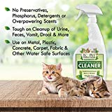 EcoPet All Natural Pet Odor and Stain Remover