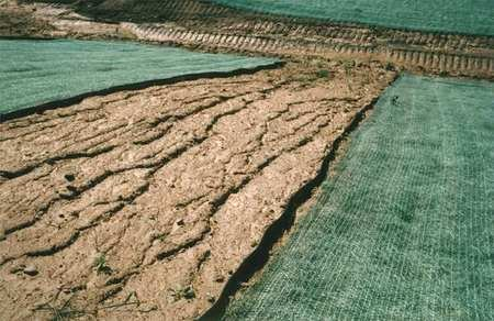 Erosion Control Blanket, 8 x 112.5 ft.